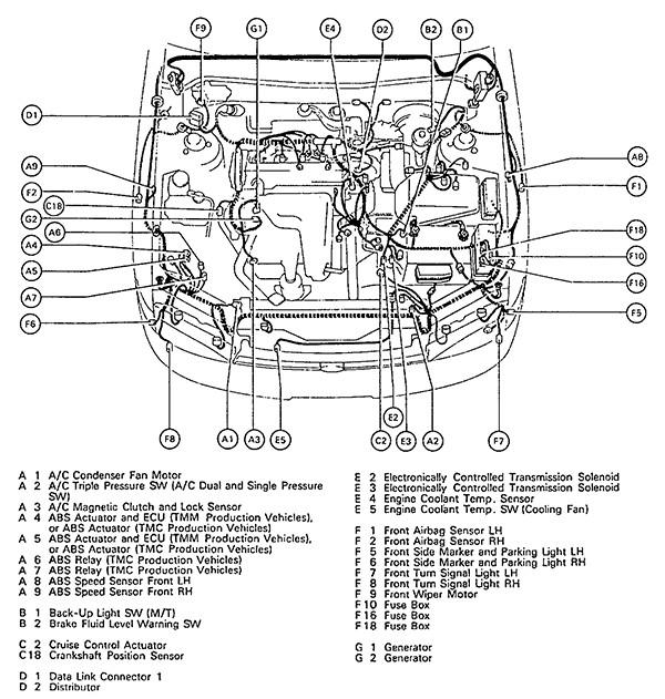 Brilliant Toyota Camry Engine Diagram Basic Electronics Wiring Diagram Wiring Cloud Orsalboapumohammedshrineorg