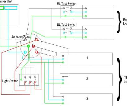 Cool How To Wire A Light Switch In Middle Of A Circuit Brilliant Mercury Wiring Cloud Mousmenurrecoveryedborg