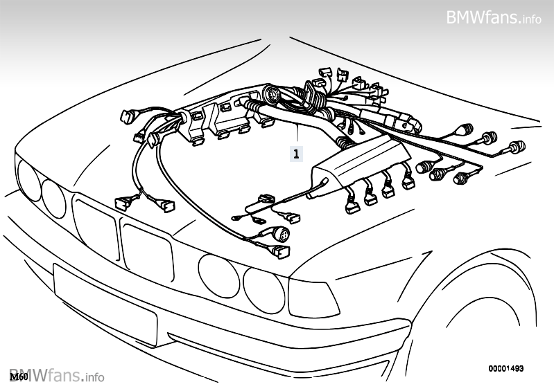 Bmw S62 Wiring Diagram