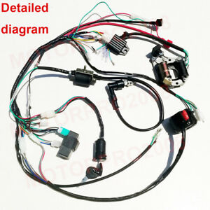 Awesome Complete Electrics 110Cc 50Cc 70Cc 125Cc Wiring Harness Atv Mini Wiring Cloud Biosomenaidewilluminateatxorg