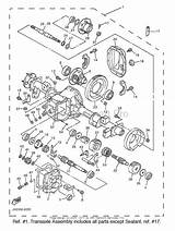 Fabulous Gas Engine Yamaha Golf Cart Gas Engine Diagram Wiring Cloud Ittabpendurdonanfuldomelitekicepsianuembamohammedshrineorg