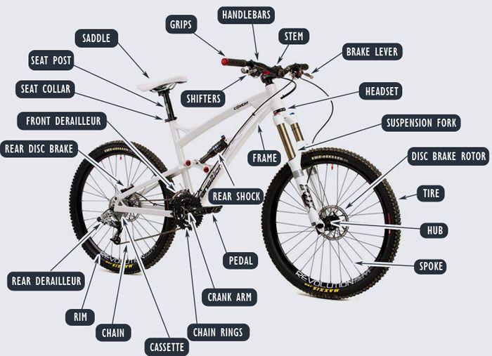 Phenomenal Mountain Bike Parts Diagram Bike Parts Mountain Bike Parts Wiring Cloud Onicaalyptbenolwigegmohammedshrineorg