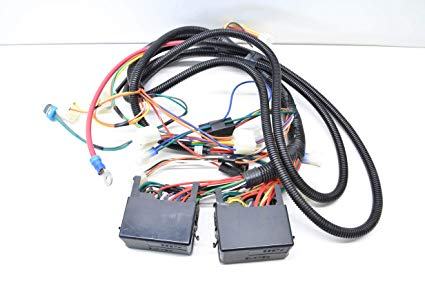 Surprising Amazon Com Cub Cadet 725 04355 209 Wiring Harness Automotive Wiring Cloud Counpengheilarigresichrocarnosporgarnagrebsunhorelemohammedshrineorg