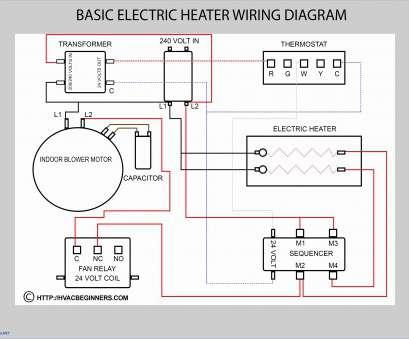 Taco Circulators Wiring Diagrams For - 1995 Geo Prizm Engine Diagram List  Data Schematicsantuariomadredelbuonconsiglio.it