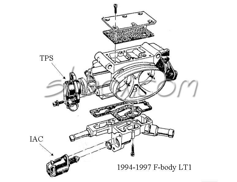 Terrific 96 Camaro Engine Diagram The Uptodate Wiring Diagram Blogs Wiring Cloud Picalendutblikvittorg