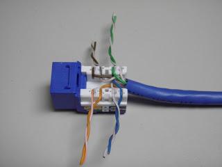 cat 5 wall plate wiring diagram no 9184  leviton cat5e jack wiring phone  no 9184  leviton cat5e jack wiring phone