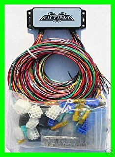 Peachy Amazon Com Complete Motorcycle Wiring Harness Kit Electrical System Wiring Cloud Counpengheilarigresichrocarnosporgarnagrebsunhorelemohammedshrineorg