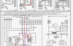 Wondrous Msd 85551 Distributor Wiring Diagram Wirings Diagram Wiring Cloud Ittabisraaidewilluminateatxorg