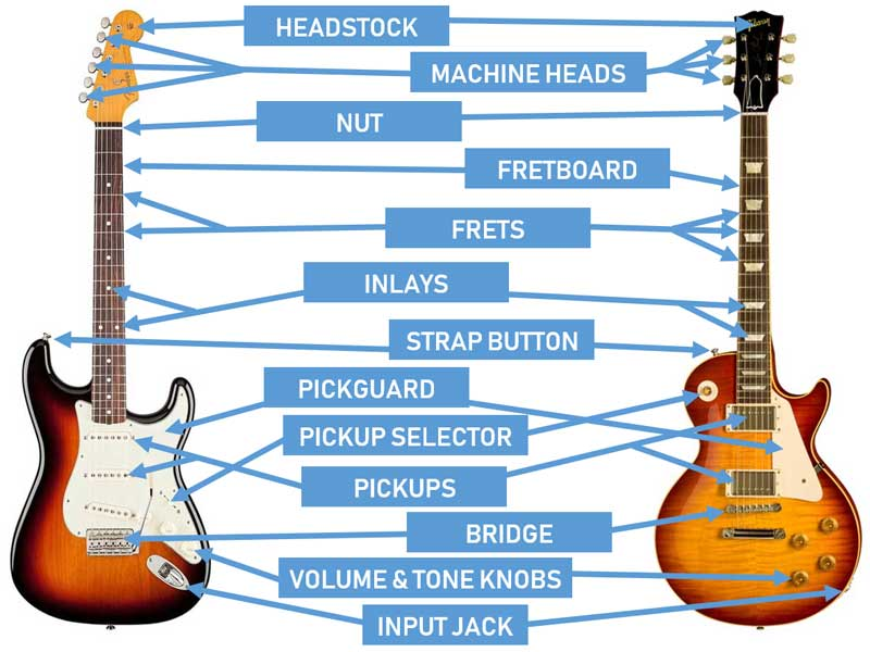 Pleasant Parts Of The Guitar Diagrams For Acoustic And Electric Guitars Wiring Cloud Timewinrebemohammedshrineorg