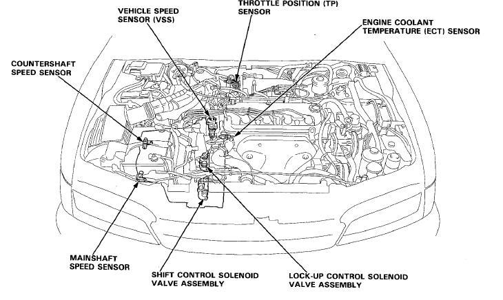 1995 Honda Accord Cooling System Wiring Diagram 2001 Caravan Wiring Diagram Hazard Maxoncb Cukk Jeanjaures37 Fr