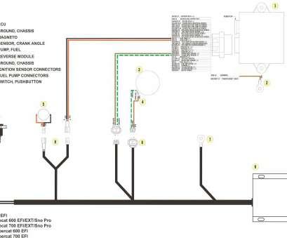 Awesome Exmark Starter Wiring Diagram Perfect Exmark Lazer Z Lawn Mower Wiring Cloud Icalpermsplehendilmohammedshrineorg