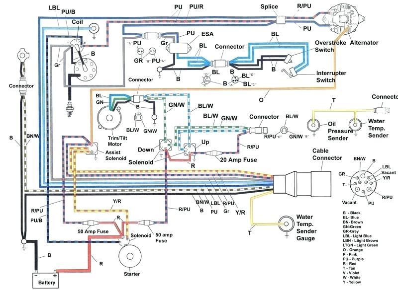 Mercury Trim Switch Wiring Diagram