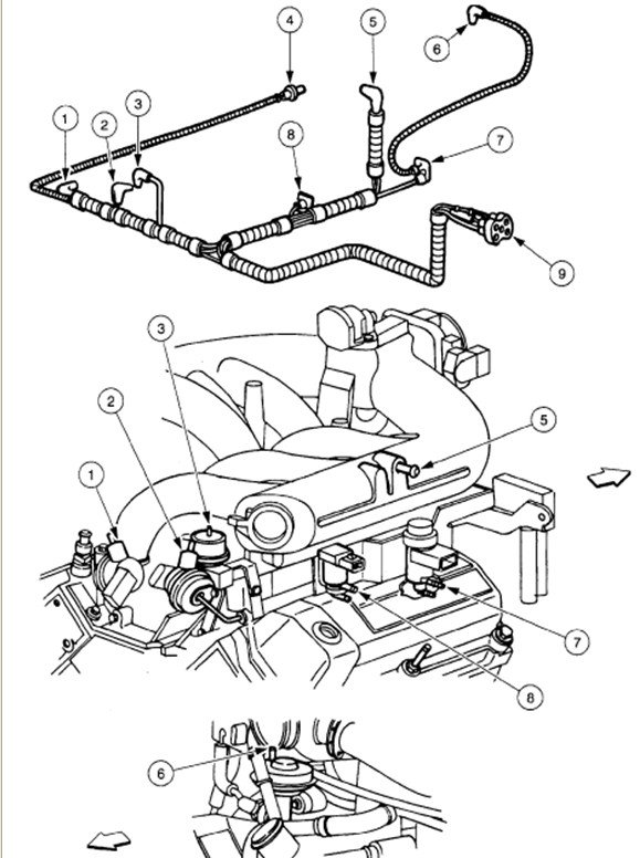 Surprising 1997 Ford F 150 Vacuum Diagram Wiring Diagram Wiring Cloud Cranvenetmohammedshrineorg