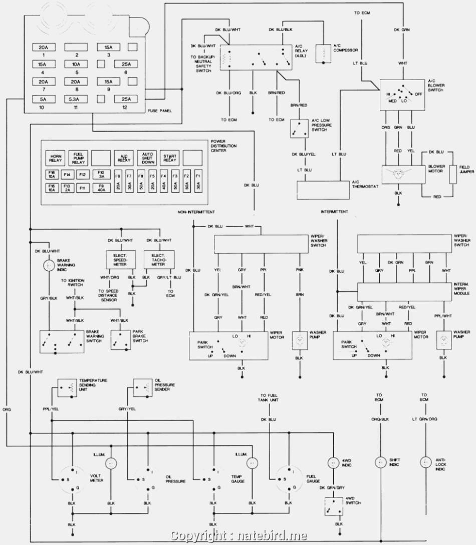 Diagram Jeep Tj Turn Signal Wiring Diagram Full Version Hd Quality Wiring Diagram Enginewiringschool Gruppe Freiburg 1 De