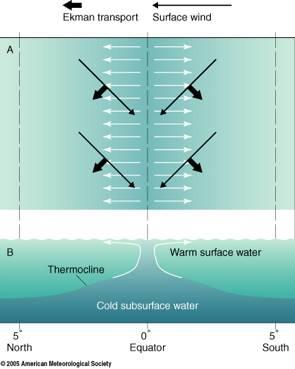 Prime Ocean Motion Definition Wind Driven Surface Currents Upwelling Wiring Cloud Icalpermsplehendilmohammedshrineorg