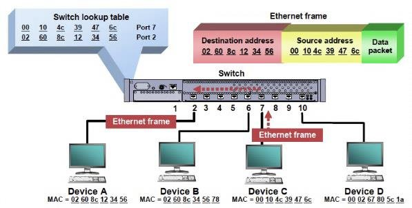 Stupendous Ethernet Switch Diagram Today Diagram Data Schema Wiring Cloud Onicaxeromohammedshrineorg