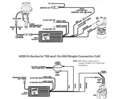 Miraculous 10 Practical Msd 6425 Wiring Diagram Images Tone Tastic Wiring Cloud Itislusmarecoveryedborg