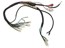Pleasant Bmx Atv Wiring Harness Circuit Diagram Template Wiring Cloud Hisonepsysticxongrecoveryedborg