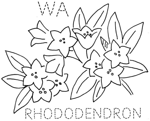 Rhododendron coloring page | Coloring pages | 482x600