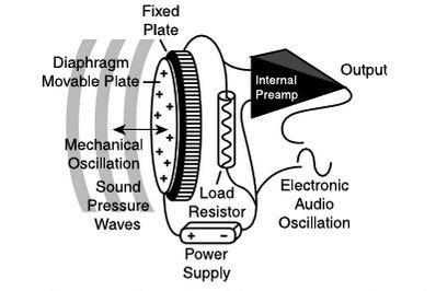 Outstanding Condenser Microphone Diagram Basic Electronics Wiring Diagram Wiring Cloud Dulfrecoveryedborg