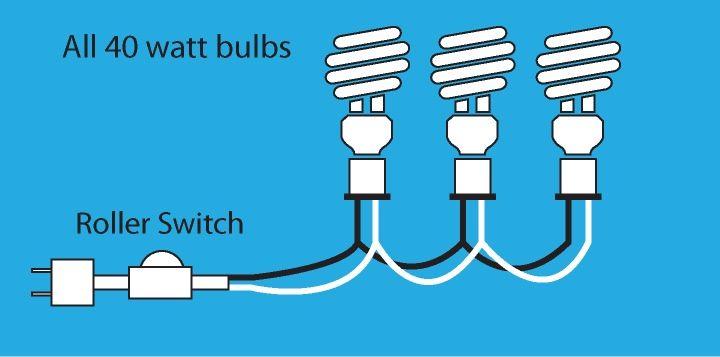 Fantastic Wiring A 3 Bulb Lamp Wiring Cloud Licukaidewilluminateatxorg