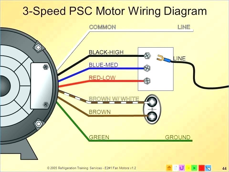 Century Motor Wiring Diagram - Collection