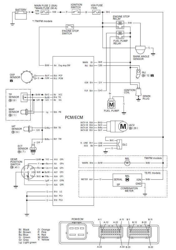 Miraculous Wiring Diagram For Honda Recon Es Wiring Diagram Wiring Cloud Licukshollocom