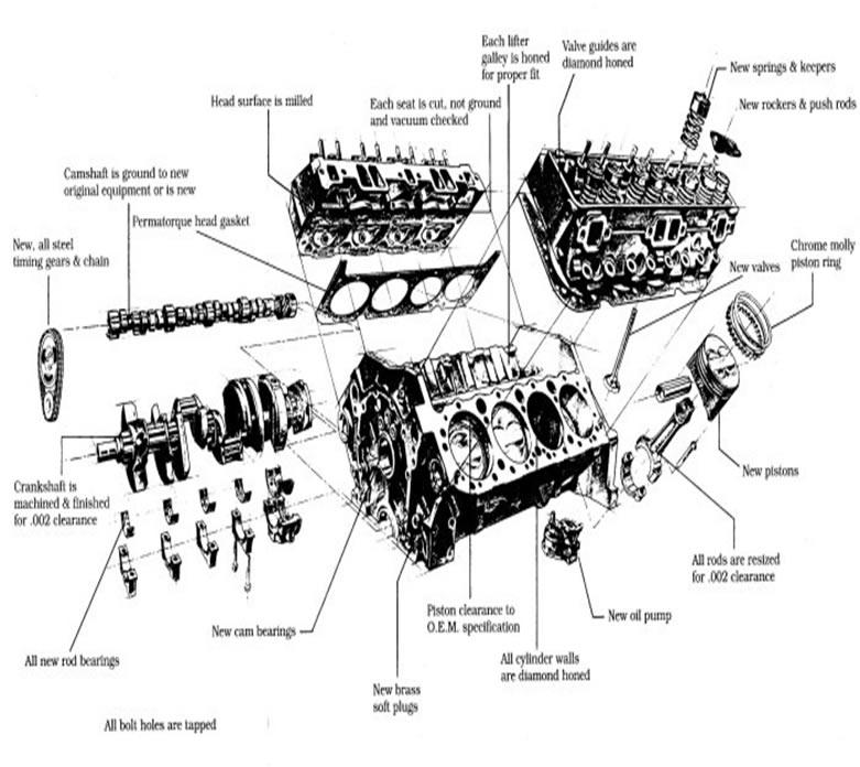 [DIAGRAM_3ER]  SR_8027] 283 Chevy Engine Distributor Diagram Download Diagram | Big Block Chevy Engine Diagram |  | Targ Penghe Vira Mohammedshrine Librar Wiring 101