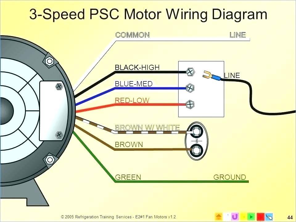 century fan motor wiring diagram isuzu giga wiring diagram