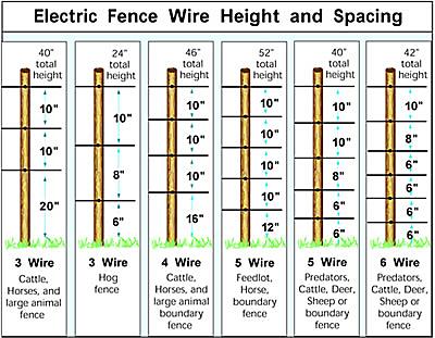 Pin By Denny Meyrand On Farm Stuff Wire Fence Backyard Fences Fence