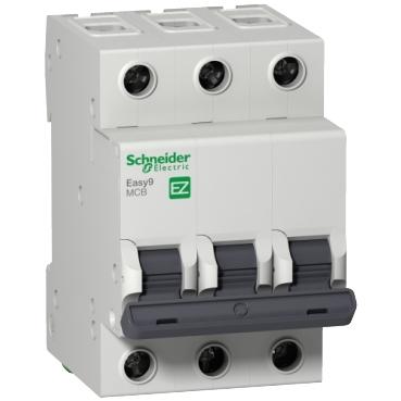Groovy Miniature Circuit Breaker Schneider Electric Wiring Cloud Cranvenetmohammedshrineorg