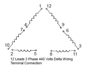 Outstanding Wiring Diagram 12 Lead 460 Volt Motor Wiring Diagram Wiring Cloud Histehirlexornumapkesianilluminateatxorg
