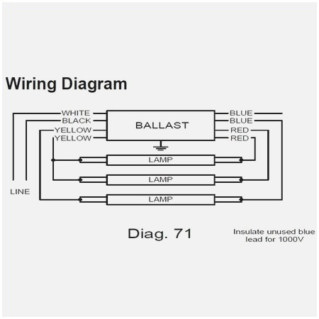 Philips Advance Ballast Wiring Diagram - 2005 Ford 4 0 Engine Diagram  sonycdx1.au-delice-limousin.fr | Advance Ballast Wiring Diagram |  | Bege Wiring Diagram