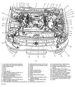 1999 F150 5 4 Wiring Diagram Wiring Diagram Snow Series Snow Series Pasticceriagele It