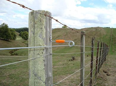 Pleasing Build An Electric Fence Gallagher New Zealand Wiring Cloud Overrenstrafr09Org