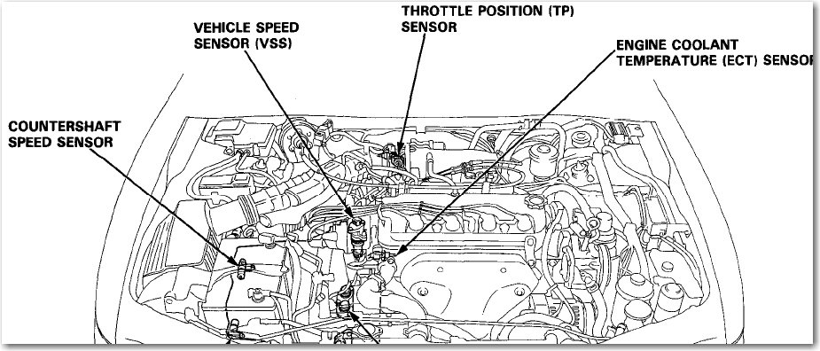1994 Honda Accord Wiring Diagram Download from static-cdn.imageservice.cloud