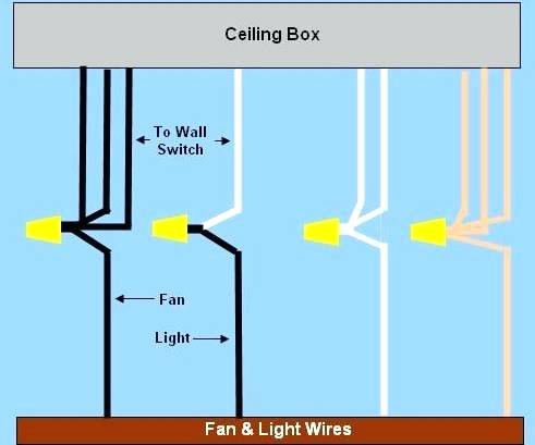 Wiring Diagram For Ceiling Fan With Light Switch from static-cdn.imageservice.cloud