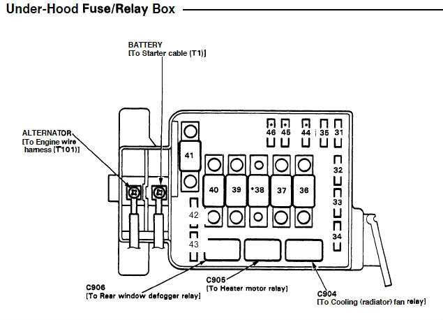Fabulous 1995 Civic Ex Fuse Box Wiring Diagram Online Wiring Cloud Ittabpendurdonanfuldomelitekicepsianuembamohammedshrineorg
