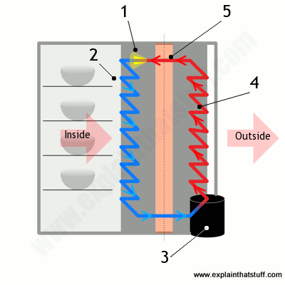 Super How Refrigerators Work Explain That Stuff Wiring Cloud Lukepaidewilluminateatxorg