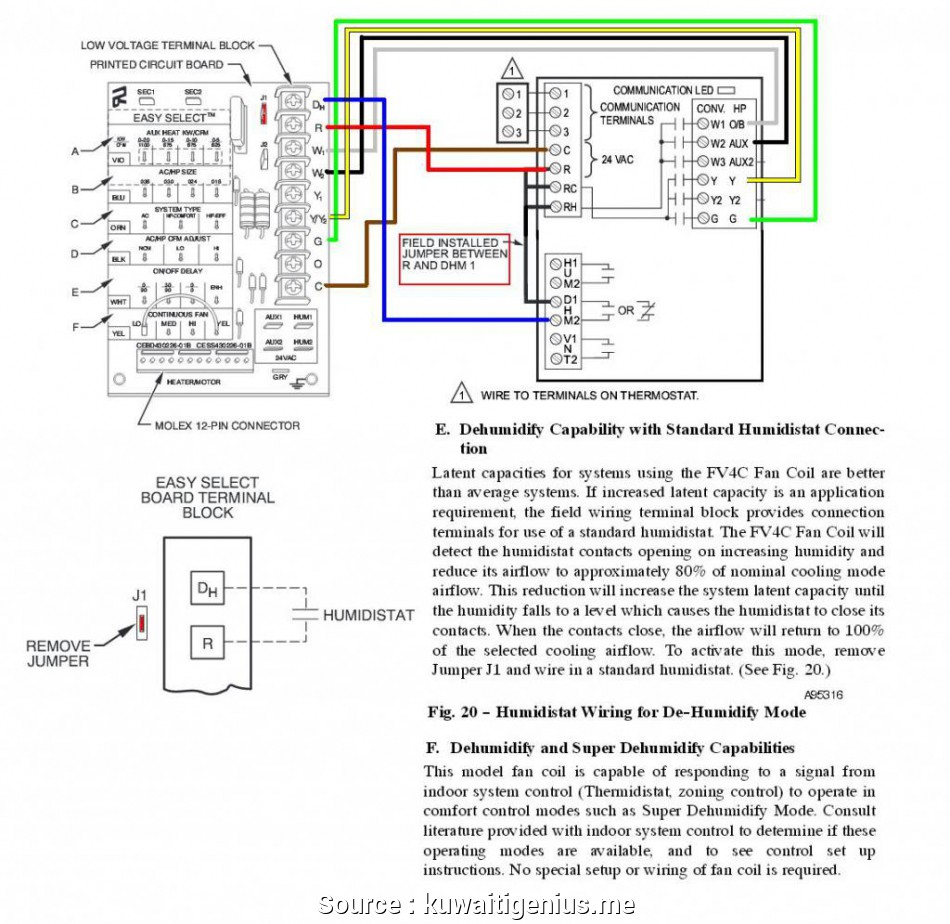 Tremendous Wiring Diagram To Thermostat Practical Ruud Heat Pump Thermostat Wiring Cloud Waroletkolfr09Org