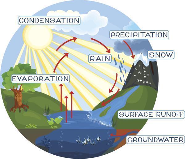 EM_0582] Explain Water Cycle With Diagram Schematic WiringOsuri Dome Sapre Cajos Mohammedshrine Librar Wiring 101