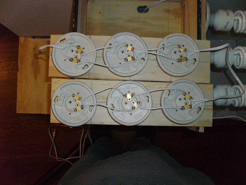 Fine How To Wire Multiple Cfls Pagina 3 Growroom Designs Equipment Wiring Cloud Orsalboapumohammedshrineorg