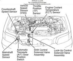 Tremendous 91 Honda Accord Engine Diagram Basic Electronics Wiring Diagram Wiring Cloud Onicaxeromohammedshrineorg