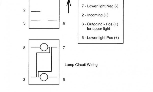 Remarkable Qtronics Toggle Switch Wiring Diagram Wiring Diagram Wiring Cloud Orsalboapumohammedshrineorg