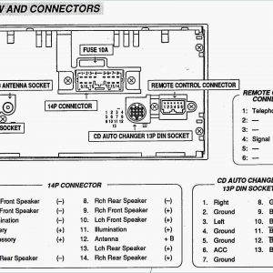 Sensational Wiring Diagram For Ac Delco Radio Archives Servisi Co Ac Delco Wiring Cloud Grayisramohammedshrineorg
