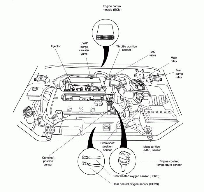 TZ_5368] 2000 Kia Sephia Engine Diagram Wiring Diagram