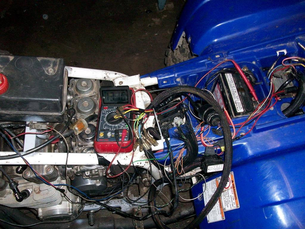 RY_7342] Yamaha Warrior 350 Wiring Wiring DiagramStica Flui Lline Jebrp Dome Mohammedshrine Librar Wiring 101