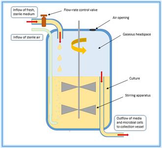 Strange Chemostat Wikipedia Wiring Cloud Overrenstrafr09Org