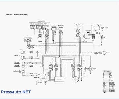 NF_3250] 1997 Yamaha Warrior 350 Wiring Diagram Free DiagramHapolo Vesi Mohammedshrine Librar Wiring 101