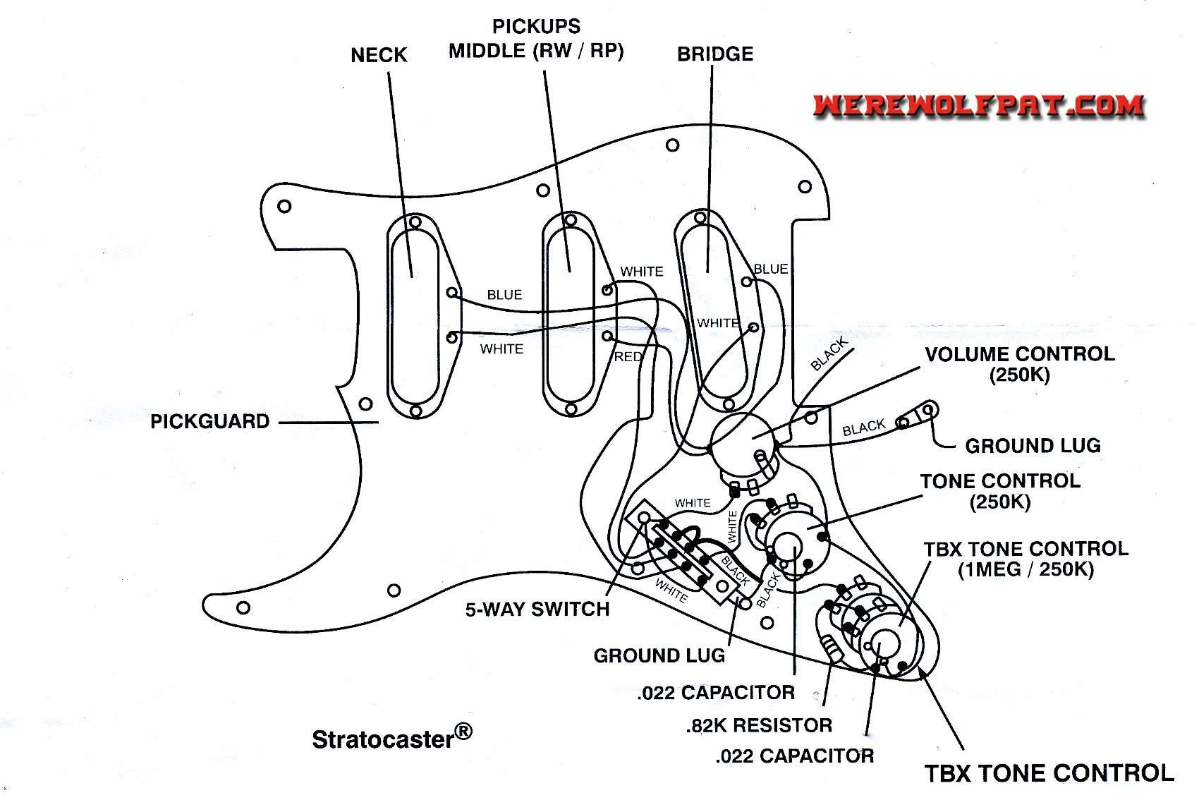 Brilliant Fender Strat 3 Way Switch Wiring Diagram All Wiring Diagram Wiring Cloud Licukshollocom